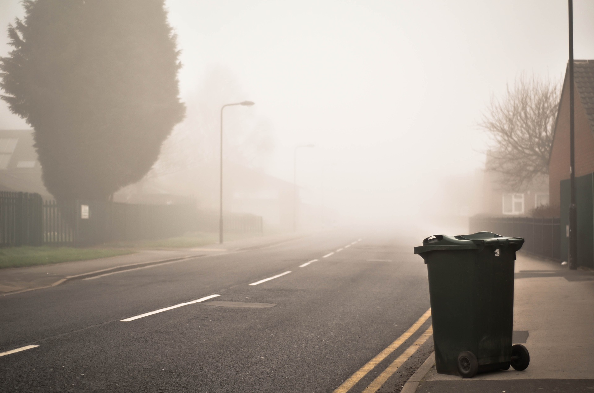 Photo of a bin left out on the pavement