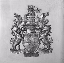 Newcastle City Council Crest Door Push